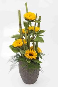 bloemen van gogh