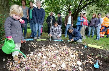 Bollen Bloeiend Voorjaar : Buurtbewoners planten bollen in leiden op nationale bollenplantdag