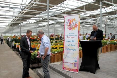 Bloemen en plantennieuws - Netherlands eerste divisie league table ...