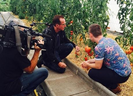 Tuinverbouwing Nieuwe Vloer : Over de vloer bij de grootste tomatenkenner van belgië