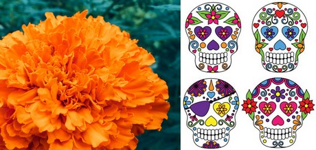 Flower sales to profit from day of the dead mightylinksfo