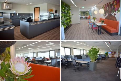 open office nl