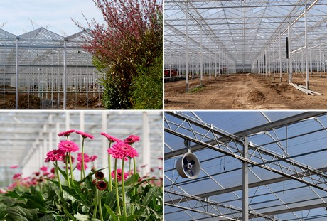 Nl mans flowers expands greenhouse once again