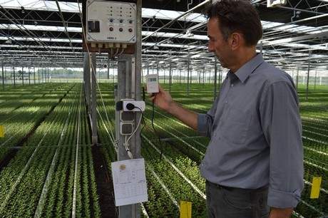 How does electromagnetic radiation affect plants?